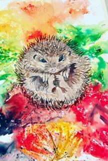 Brusho Hedgehog